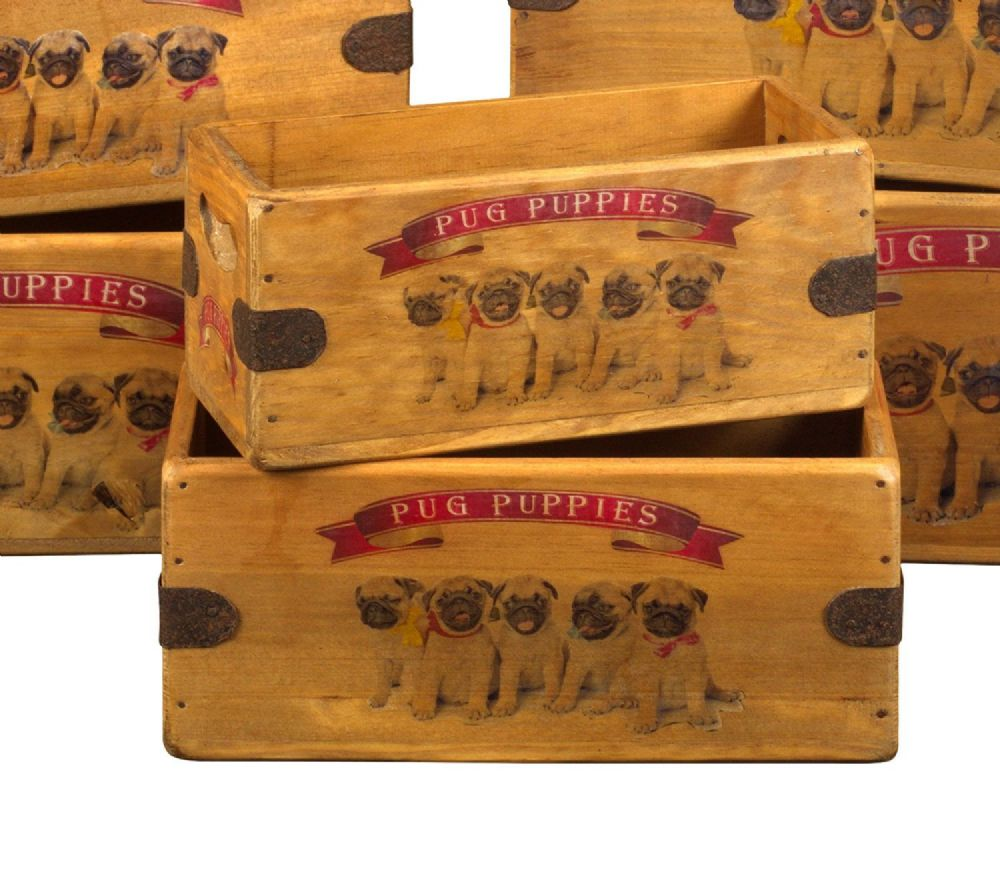 Pug Puppies Box Vintage Wooden Dog Crate